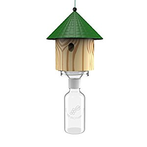 Best Hut Trap - Wood Carpenter Bee Trap Review