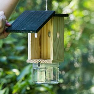 Tingle Tongle Bee Trap - Premium Wood Carpenter Bee Trap Review